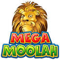 Mega Win on Mega Moolah at Zodiac Casino, New Licenses and Games