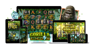 Gorilla Kingdom Slot